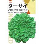 作りやすい中国野菜