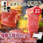 父の日 肉 牛肉 焼き肉 飛騨牛焼肉セット カルビ もも・かた肉 送料無料 贈り物 バーベキュー