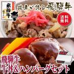 ギフト 肉 牛肉  飛騨牛 牛丼 & 飛騨牛 生 ハンバーグ 各4個セット レトルト 備蓄 保存食 お手軽