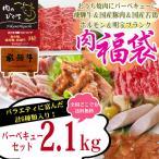 牛肉 肉 焼き肉 焼肉 バーベキュー用セット 飛騨牛入 2.1kg 5〜8人分 国産 豚肉 鶏...