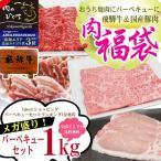 牛肉 肉 焼き肉 焼肉 バーベキュー用セット 飛騨牛と国産豚肉 1kg 約4〜5人 お取り寄せ...