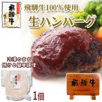 肉 牛肉  和牛 飛騨牛 生ハンバーグ 120g 黒毛和牛 惣菜 お弁当 冷凍食品 お取り寄せ グルメ