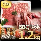 肉 牛肉 バーベキュー用セット 焼肉 焼き肉 飛騨牛 国産豚肉 牛たん芯 1.2kg 約3〜5...