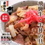 牛肉 和牛 飛騨牛 牛丼の具 180g×5袋 レトルト 簡単調理 送料無料 プレゼント