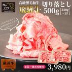 內腿 - 肉 牛肉 訳あり わけあり 飛騨牛 切り落とし肉 500g 250×2p  送料無料 お取り寄せ グルメ 黒毛和牛