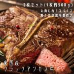 Tボーンステーキ&Lボーンステーキ 2枚セット(各1枚) 米国産ブラックアンガス牛 スパイス・焼き方の説明書付き