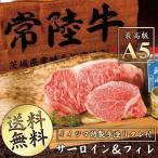 お中元 ギフト 和牛 ステーキ サーロイン フィレ 各1枚ずつ 送料無料 常陸牛 A5 牛肉 国産 ヒレ