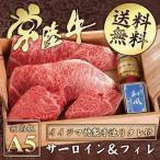 お中元 ギフト 和牛 ステーキ サーロイン フィレ 各2枚ずつ 送料無料 常陸牛 A5 牛肉 ヒレ
