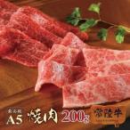お中元 ギフト 内祝い 出産 結婚 焼肉セット 和牛 牛肉 焼肉 カルビ 常陸牛 A5 焼肉セット もも 黒毛和牛