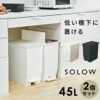 2個セット ダストボックス ゴミ箱 SOLOW ソロウ ペダルオープンツイン 45L 抗菌 防汚 加工 分別ゴミ箱 キッチン シンプル ホワイト ブラック 白