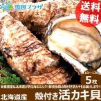 北海道産 カキ 殻付き 活牡蠣貝 5枚 かき 牡蠣 活貝 ギフト 贈り物 北海道 物産展 応援 支援 食品 グルメ お取り寄せ