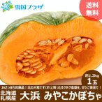 【出荷中】越冬 かぼちゃ 北海道産 大浜みやこ 1.2kg×1玉 カボチャ 南瓜 北海道 お取り寄せ