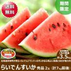 【予約】お中元 ギフト スイカ らいでんすいか 2玉 (JAきょうわ共撰 秀品 1玉 3.5kg) 北海道スイカ 暑中お見舞い 残暑お見舞い お取り寄せ