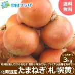 【出荷中】新玉 玉ねぎ 北海道産 札幌黄 3kg たまねぎ タマネギ 玉ネギ 玉葱 北海道 お取り寄せ
