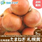 【出荷中】新玉 玉ねぎ 北海道産 札幌黄 5kg たまねぎ タマネギ 玉ネギ 玉葱 北海道 お取り寄せ
