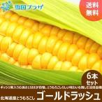 【予約】とうもろこし ゴールドラッシュ 6本セット 北海道産 トウモロコシ とうきび お取り寄せ 送料無料