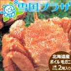 北海道産 毛ガニ 650g×2尾 (ボイル済み/冷凍) 毛がに 毛蟹 カニ ギフト 贈り物 贈答 北海道 物産展 応援 支援 食品 グルメ お取り寄せ