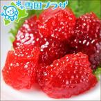 北海道産 鮭筋子 500g (塩漬け/冷凍) 筋子 ギフト 贈り物 北海道 お取り寄せ