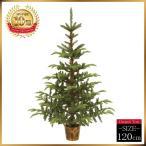 ショッピングクリスマスツリー クリスマスツリー リトルウッドベースツリー120cm【高級ポットツリー】