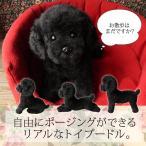リアルな犬のぬいぐるみ【トイプードル ブラック(ふわモコ生地タイプ.)】