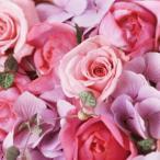 花束 誕生日 お祝い 父の日 プレゼント プレゼント 人気ランキング