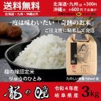 新米 龍の瞳 3kg 岐阜県産 令和3年産米 白米 ご注文後に精米・発送 送料無料