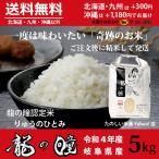 新米 龍の瞳 5kg 岐阜県産 令和3年産米 白米 ご注文後に精米・発送 送料無料