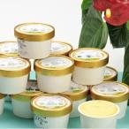 ショッピングアイスクリーム アイスクリーム ソフトクリーム お取り寄せスイーツ sweets かぼちゃ かぼちゃアイス スイーツ 有機 15個 株式会社西ノ原商事 送料無料