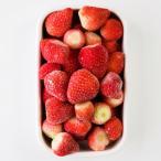冷凍いちご 熊本県産 ゆうべに 恋みのり かわいか 苺 冷凍フルーツ 国産 1kg お徳  株式会社イチゴラス 送料無料 ポイント消化