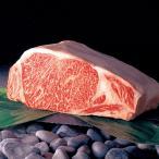 山形牛ステーキ モモ肉 480g ステーキ 山形県産 赤身 冷蔵 バーベキュー 国産 牛肉 和牛ステーキ 山形農業協同組合 送料無料 ポイント消化
