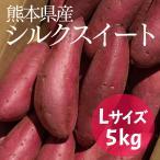 サツマイモ 熊本県産 シルクスイート 国産野菜 さつまいも 産地直送 焼き芋 A等級 Lサイズ...