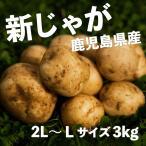 新じゃがいも 鹿児島県産 春じゃがいも ニシユタカ 秀品 2L 3kg 皮ごと美味しい 新ばれいしょ 馬鈴薯 株式会社サラダファイブ 岐阜県 ※期間限定商品