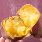 さつまいも 紅はるか 生芋 Lサイズ 2kg 茨木県産 蜜芋 サツマイモ 産地直送 新鮮 野菜 サラダファイブ