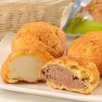 アイス 乳蔵 北海道 シュークリーム セット 2種 10個 詰め合わせ デザート スイーツ 洋菓子 ミルク