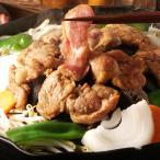 北海道 ジンギスカン セット 帯広 味付ジンギスカン肉 羊肉 ラム肉 惣菜 肉 味噌味 醤油味 料理 冷凍 詰め合わせ