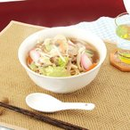 八代といえばみやべのちゃんぽん ちゃんぽんお取り寄せ☆冷凍10食セット 送料無料 ポイント消化