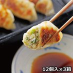 鹿児島黒豚生餃子 3箱 〔生餃子(16g×12個)×3箱、たれ13g×3個〕
