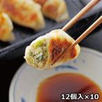鹿児島黒豚生餃子 10箱〔生餃子(16g×12個)×10箱、たれ13g×10個〕