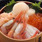 北海道 お取り寄せ 海鮮丼手作りキット 5種7個  海の幸 ほたて エビ いか いくら 送料無料 ポイント消化