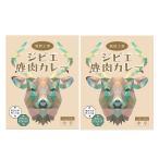 猟師工房ジビエ鹿肉カレー 2個 200g ご当地カレー 東京名物 レトルトカレー ジビエ グルメカレー 惣菜 ポスト投函便