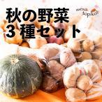 【全国送料込み】北海道ニセコ産!ニセコ山内農園 秋の野菜セット じゃがいも・玉ねぎ・かぼちゃ 約5kg