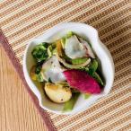 ボウル 白磁 おしゃれ  (5号) サラダ 煮物 漬物 小鉢 料亭 旅館 白磁 業務用 軽い おしゃれ シンプル レンジOK