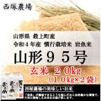 【新米】慣行栽培米 山形95号 岩魚米 (令和3年産)玄米 20kg