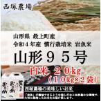 慣行栽培米 山形95号 岩魚米(平成30年産)白米 20kg