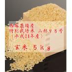 特別栽培米 山形95号 (平成28年産)玄米 5kg