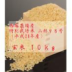 特別栽培米 山形95号 (平成28年産)玄米 10kg