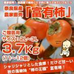 ≪送料無料≫ 奈良県西吉野産 農家直売の富有柿  贈答用(2L?3L) 3.7Kg (11?12個入り)