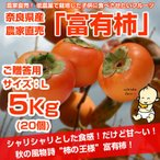 ≪送料無料≫ 奈良県西吉野産 農家直売の富有柿  贈答用(L) 5Kg (約20個入り)