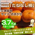 ≪送料無料≫ 奈良県西吉野産 農家直売 まったりたねなし柿 ご家庭用 3.7Kg (12?14個入り)