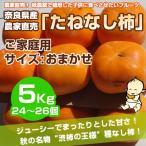 ≪送料無料≫ 奈良県西吉野産 農家直売 まったりたねなし柿 ご家庭用 5Kg (24?26個入り)